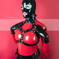 Heavy rubber collar with chest harness model.20
